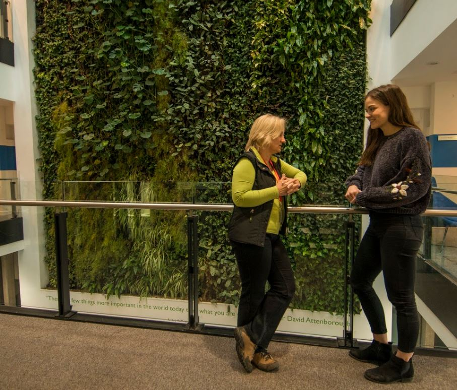 Two women chatting in front of a living wall