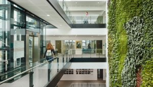 Cambridge Sustainable Marketing Internship